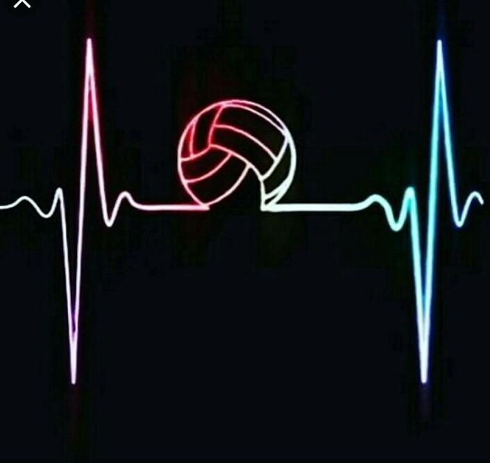 والیبال عشق است